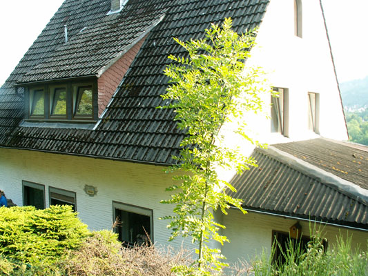 vakantiehuis hallenberg