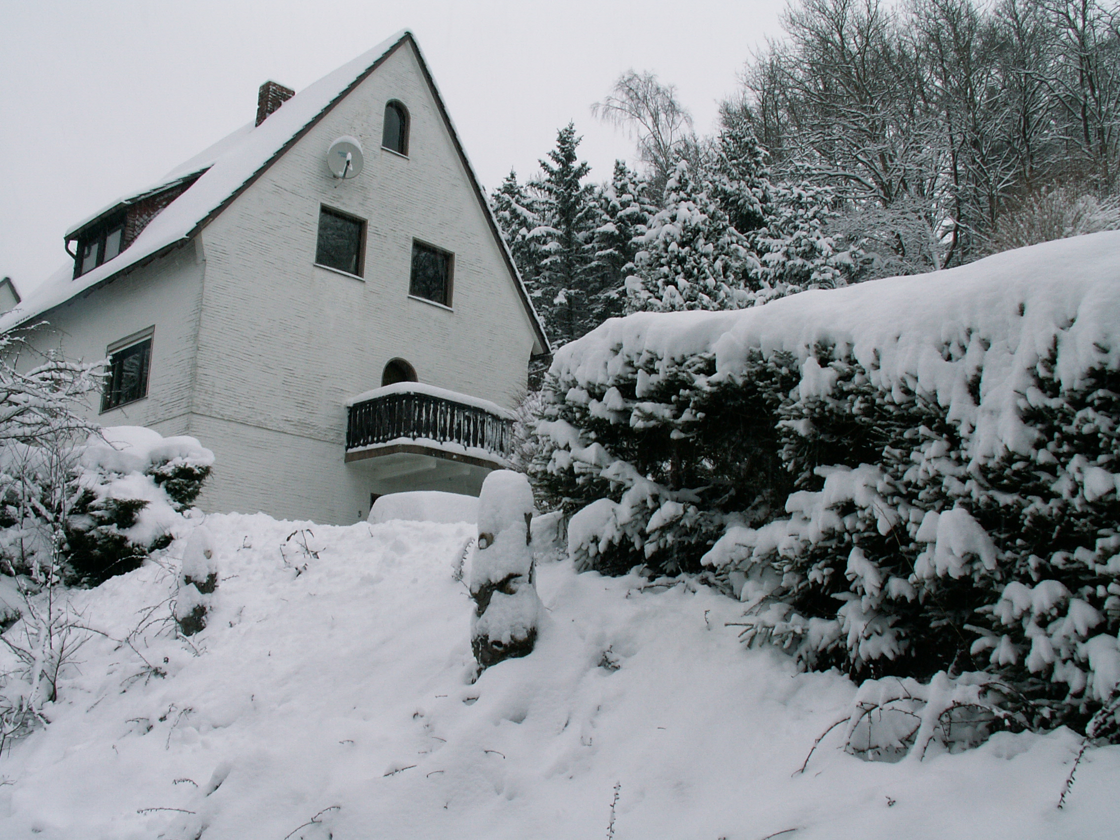 vakantiehuis happynest winterberg